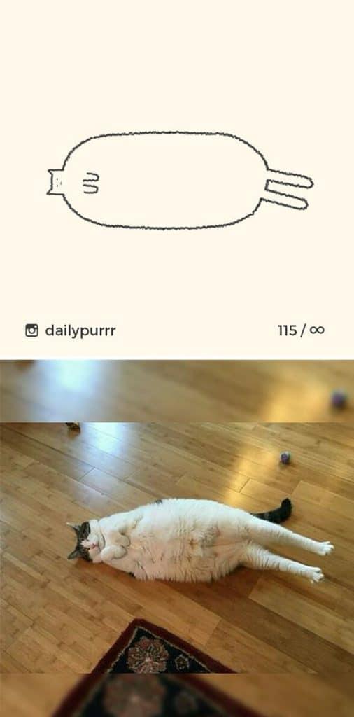 рисунки котов 2
