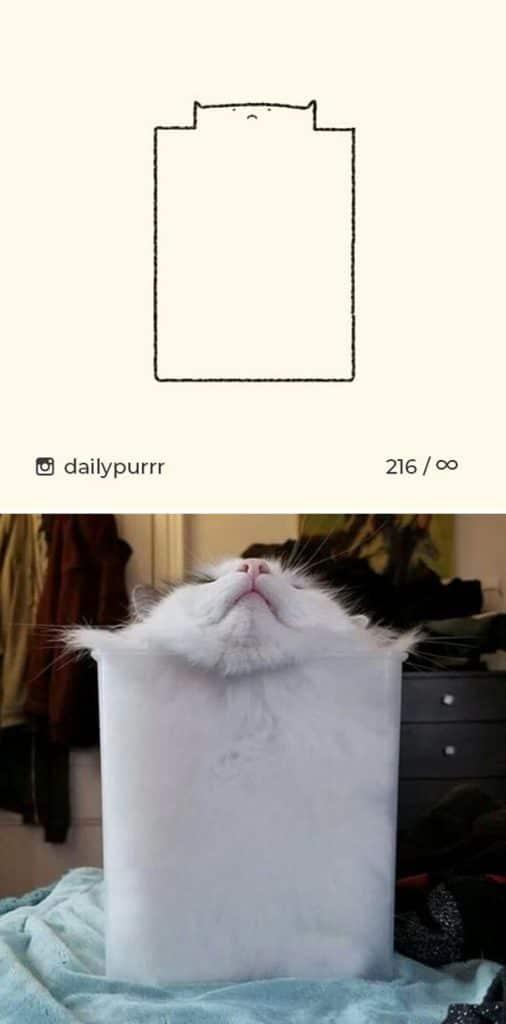 рисунки котов 23