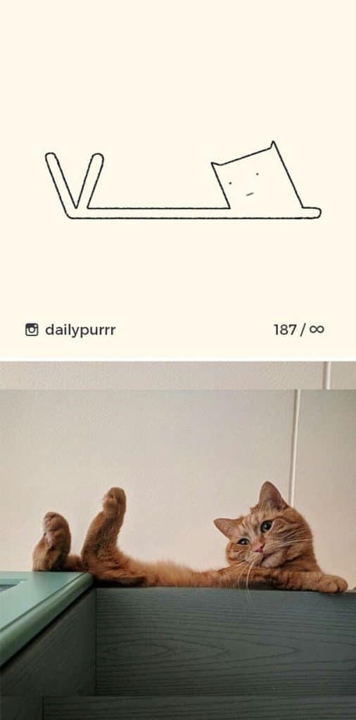 рисунки котов 22