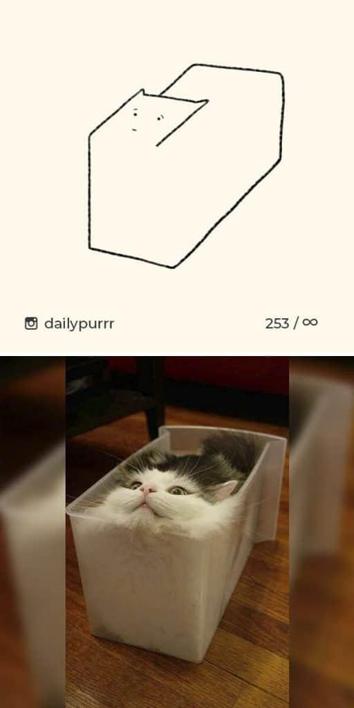 рисунки котов 7