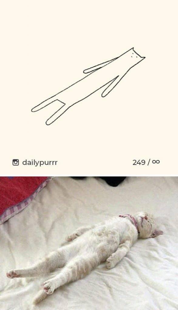 рисунки котов 4