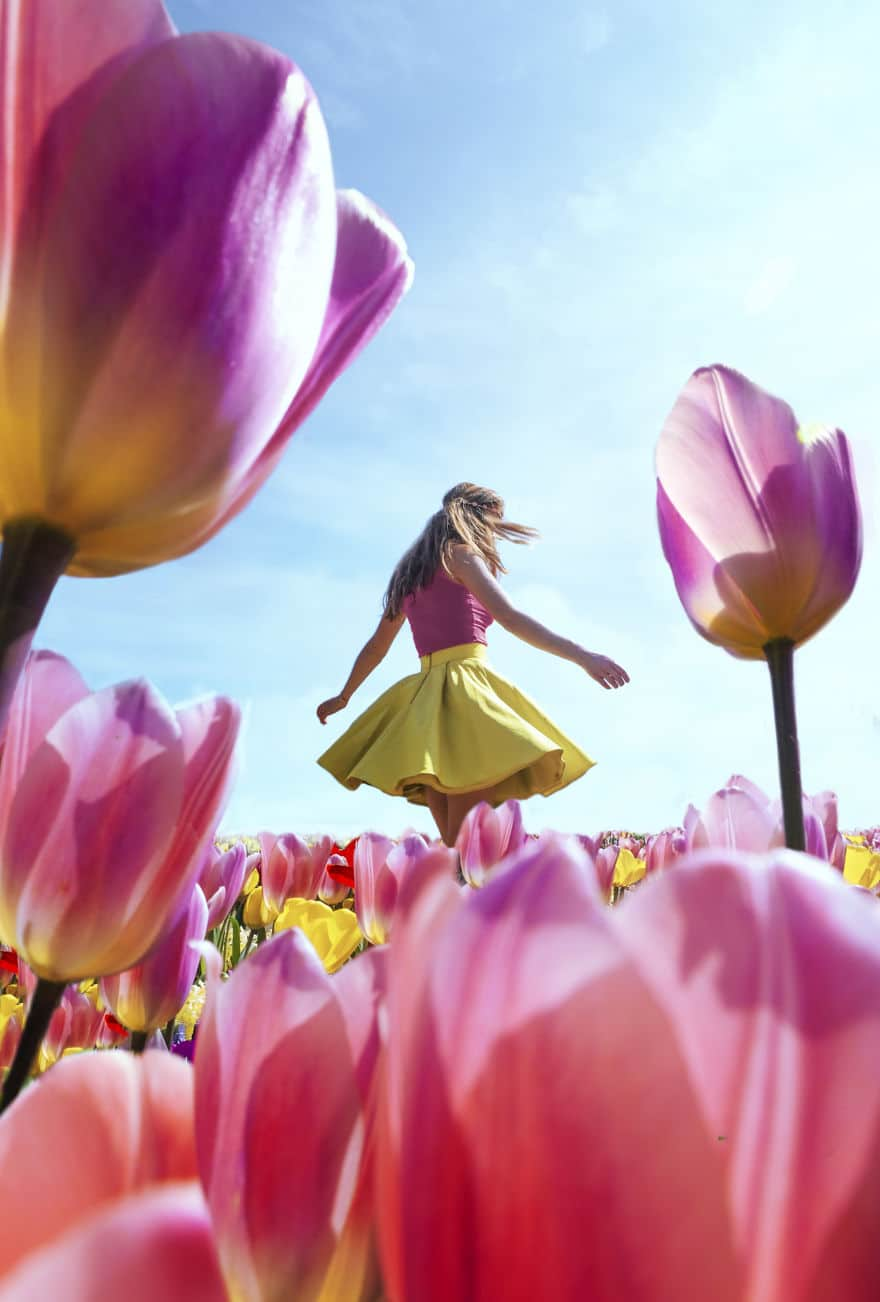 В Нидерландах зацвели 7 миллионов тюльпанов! Сказка, которую стоит увидеть! 11