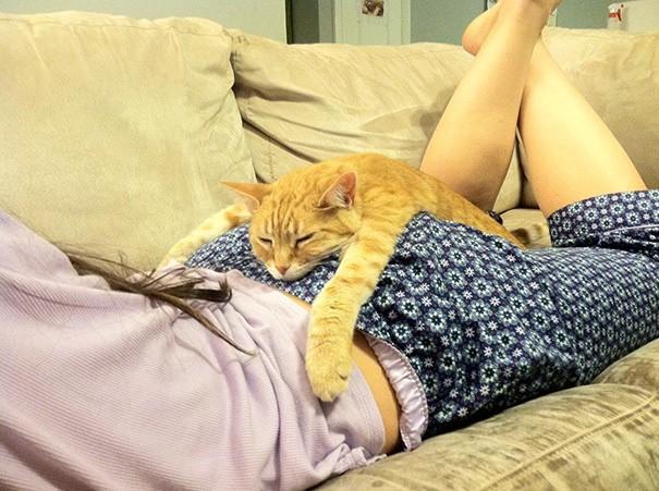 лучшая подушка