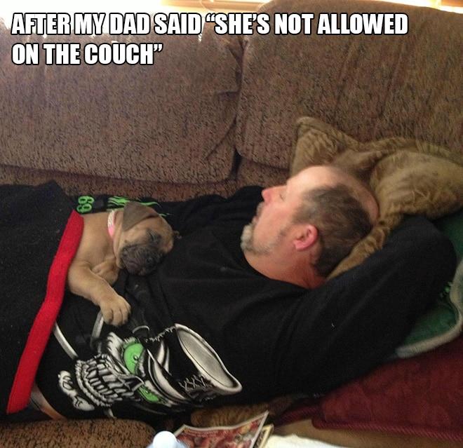 мужчина и собака на диване