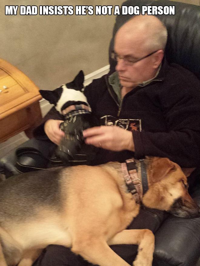 мужчина с собаками