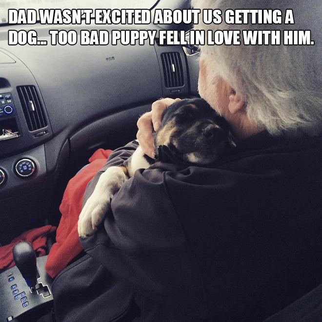 пожилой мужчина с собакой