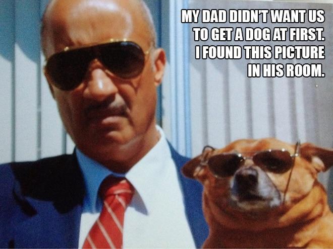 мужчина и собака в очках