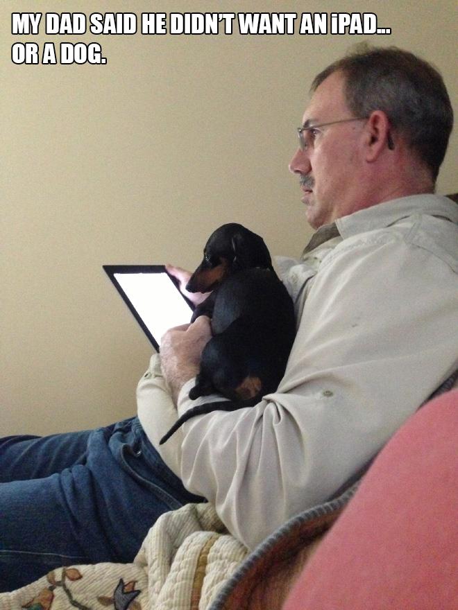 мужчина с планшетом и собакой