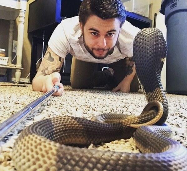 селфи со змеей