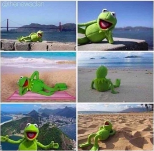 игрушечная лягушка на пляже