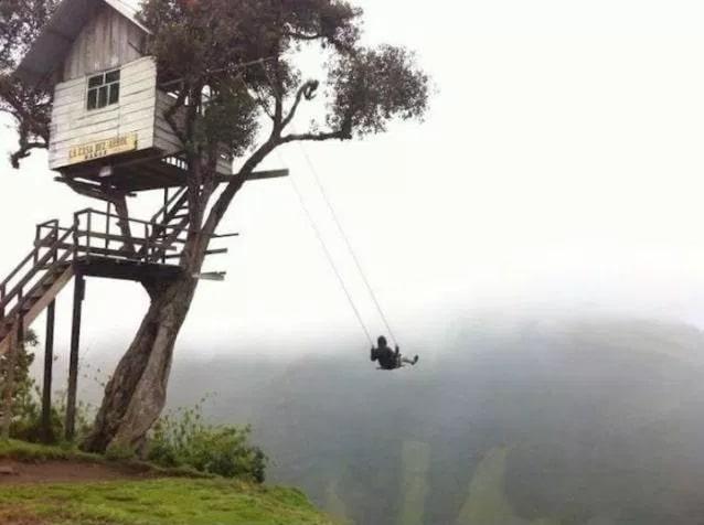 качели на дереве над пропастью