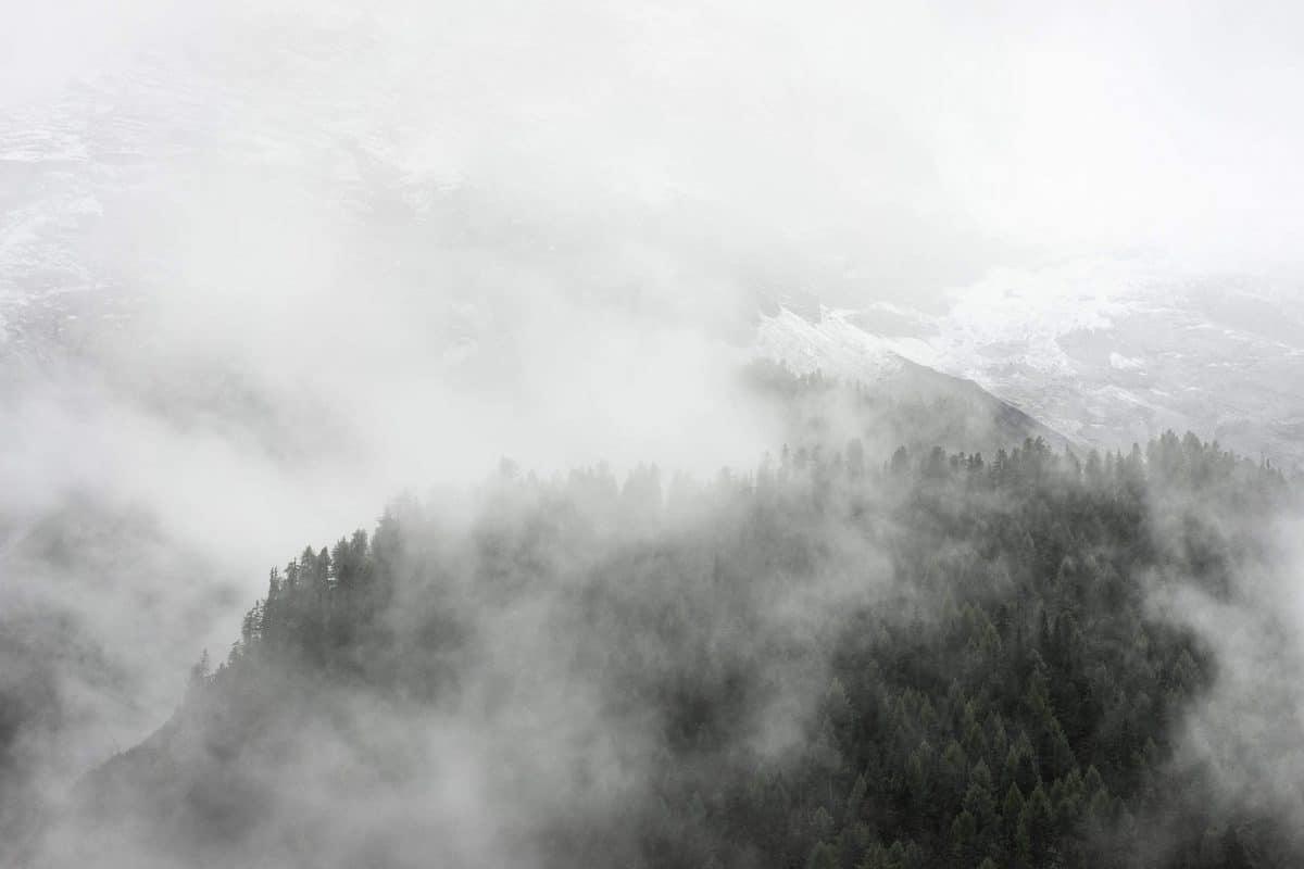 9 чудесных фото, напоминающих о прелестях зимы рис 8