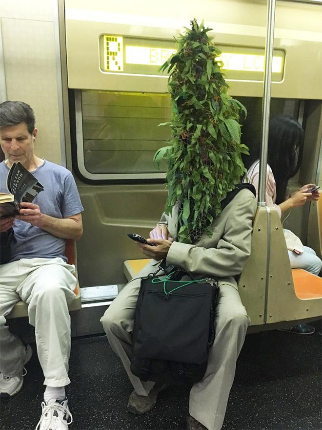 пришли эту самое смешное фото в метро свободное съемок