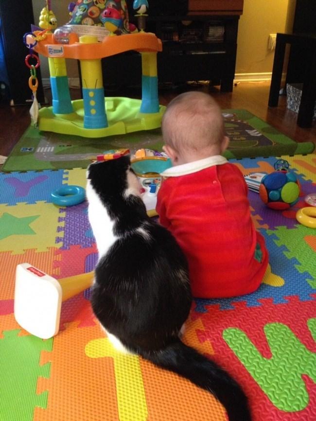 черно-белая кошка и ребенок