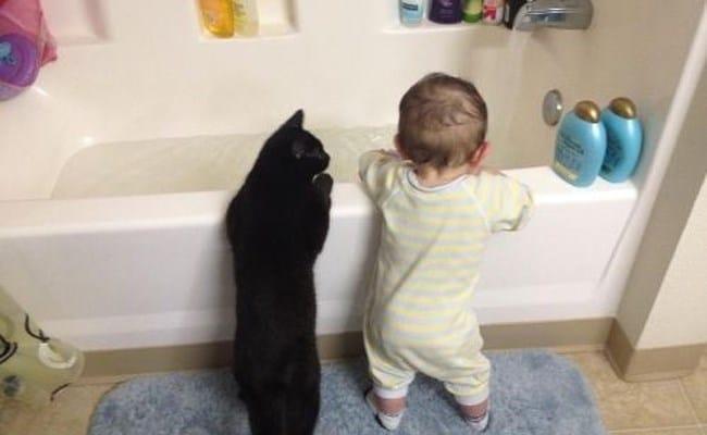 черная кошка и ребенок