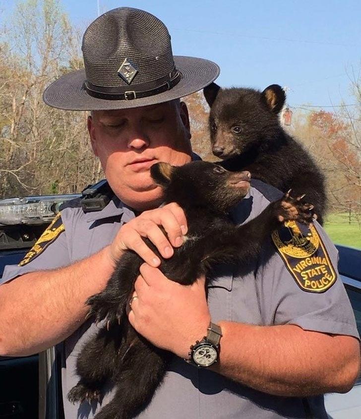 полицейский и мишки