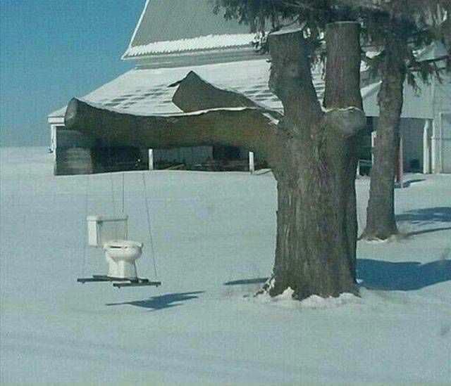 унитаз висит на дереве