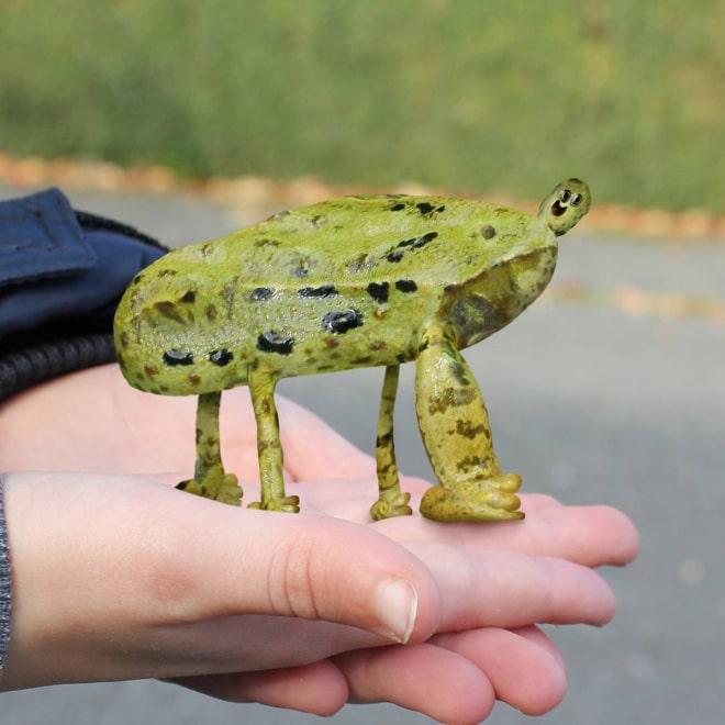 лягушка фотошоп