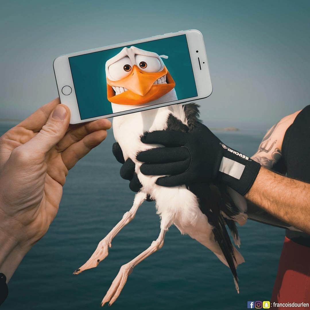 чайка в руках
