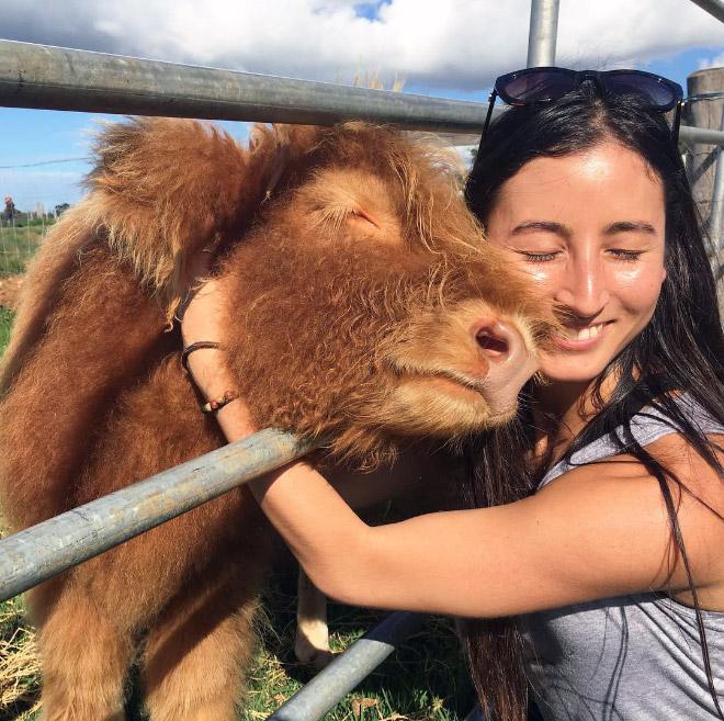 девушка обнимает корову