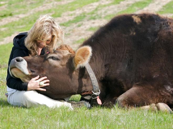 женщина обнимает корову