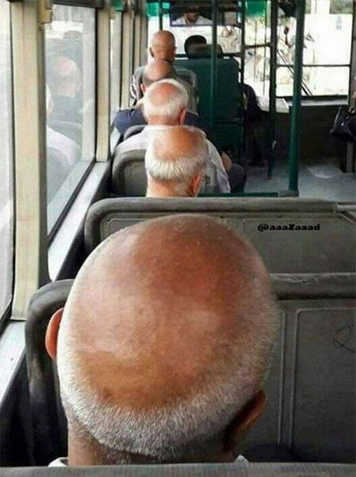 лысые мужчины в автобусе