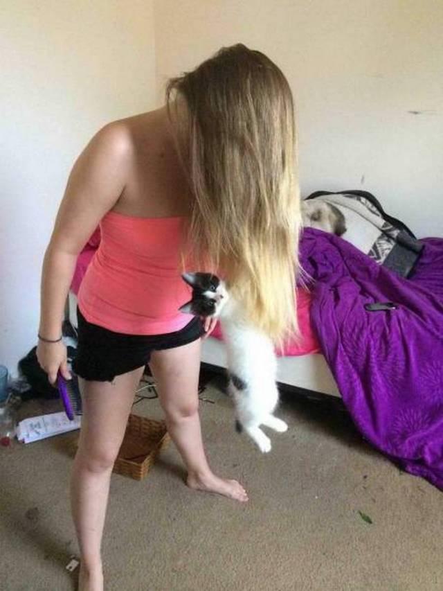 на женских волосах висит котенок