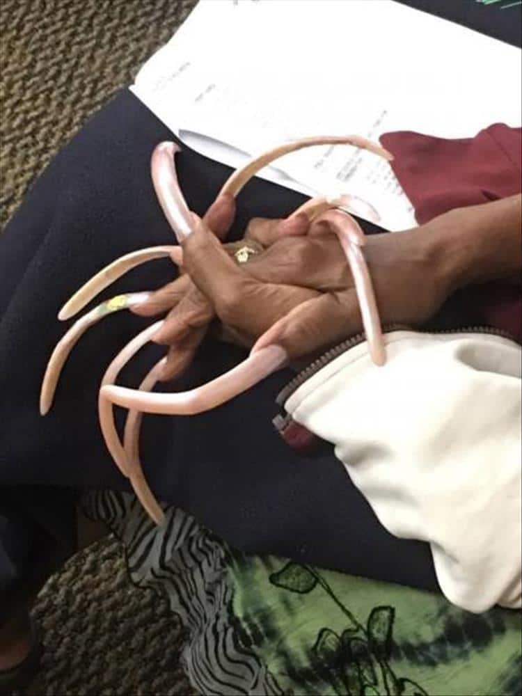 очень длинные ногти у женщины