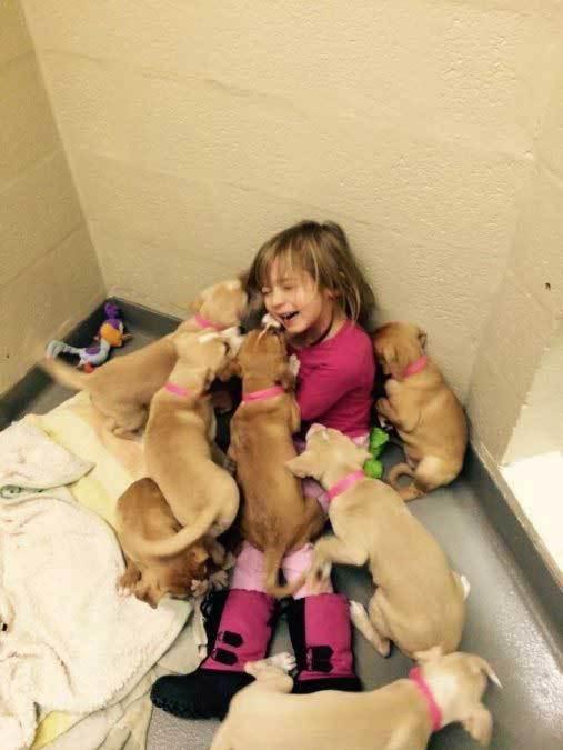 девочка со щенками
