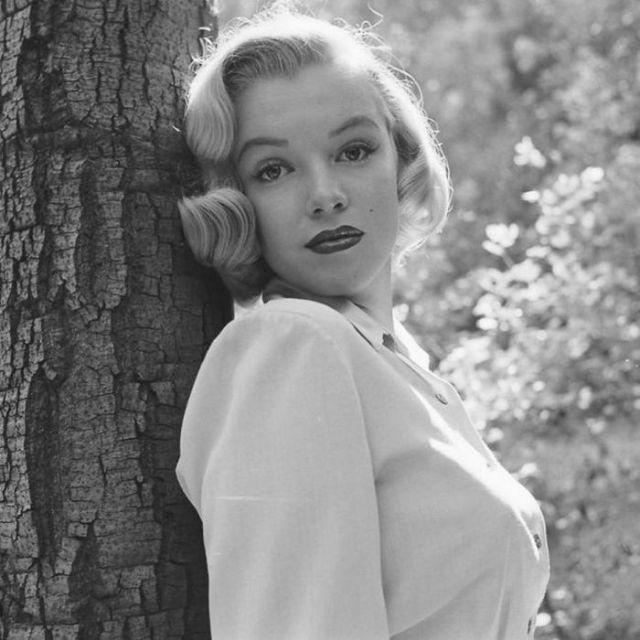 Мэрилин Монро возле дерева