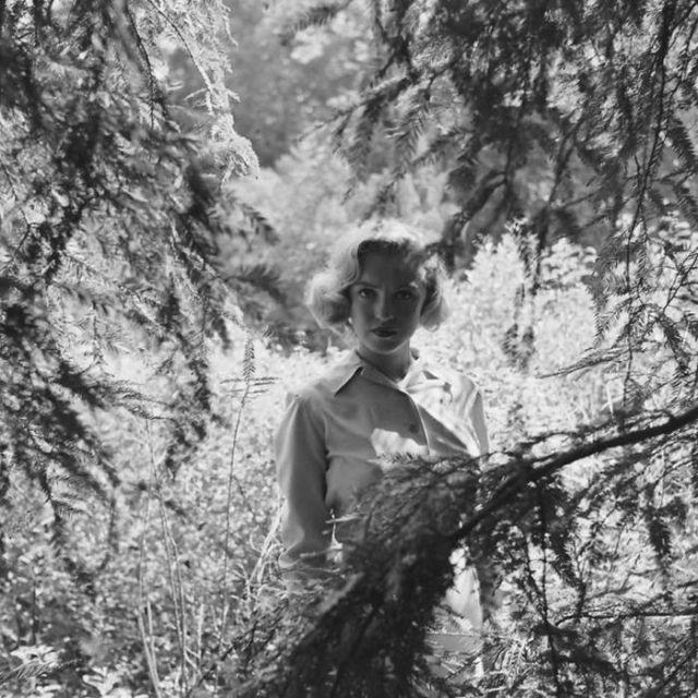 Мэрилин Монро в лесу