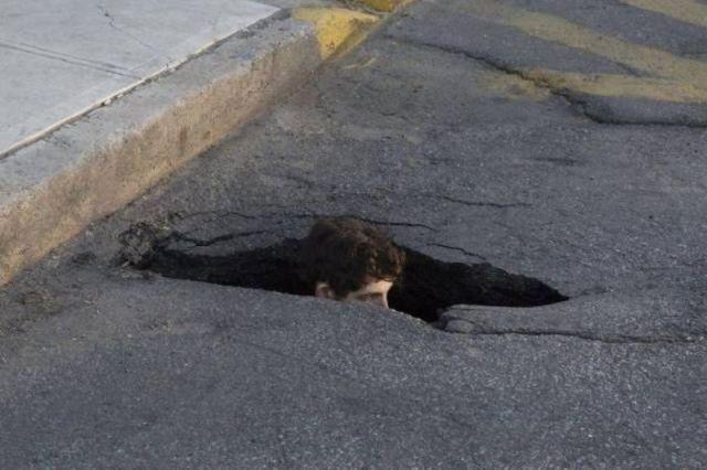 парень сидит в яме на дороге