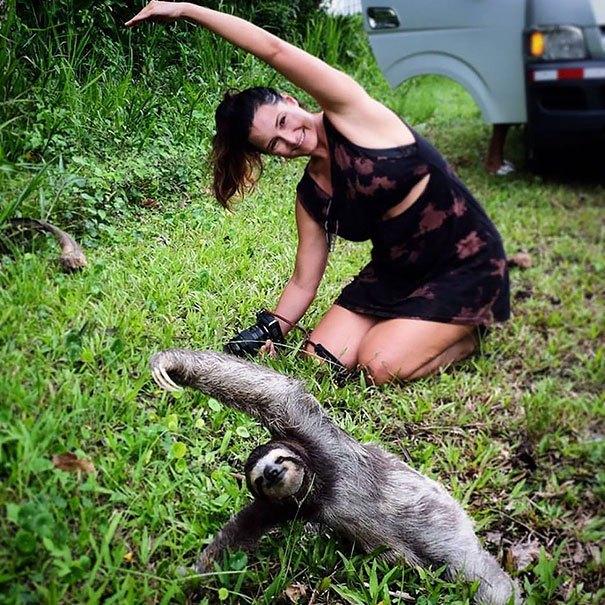 ленивец и девушка