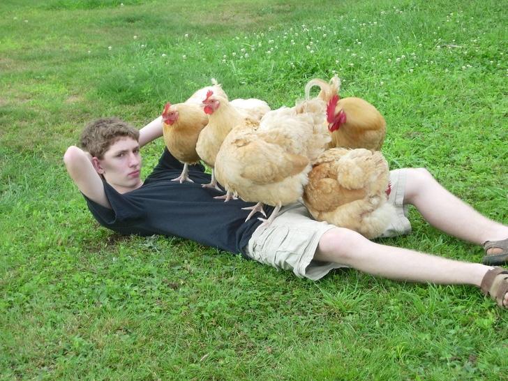 парень с курицами