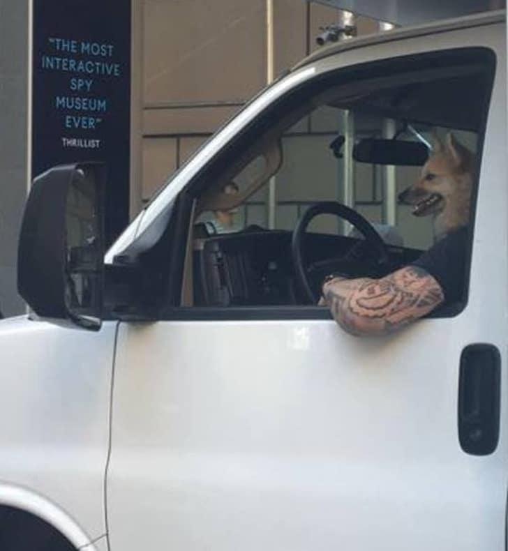 странный водитель