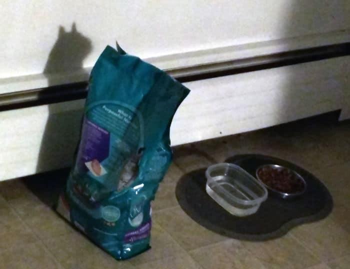 тень от пакета кошачьего корма