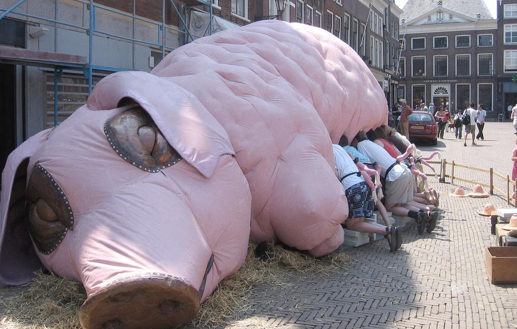 игрушечная свинья и люди