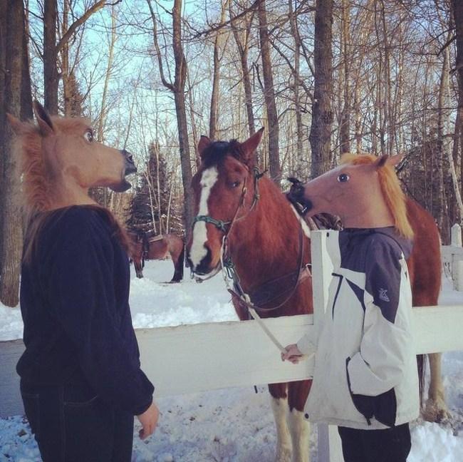 люди в лошадиных масках