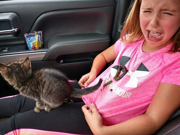котенок с девочкой