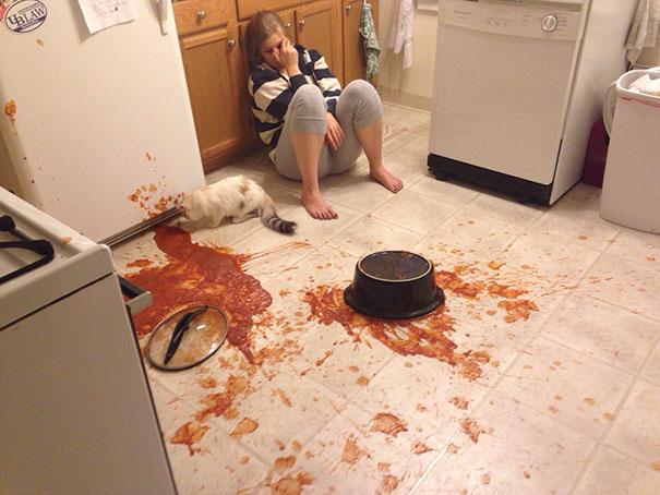 девушка и кошка в кухне