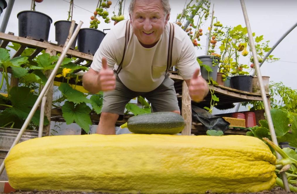 мужчина вырастил кабачок-гигант