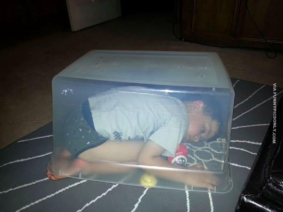 мальчик спит под коробкой