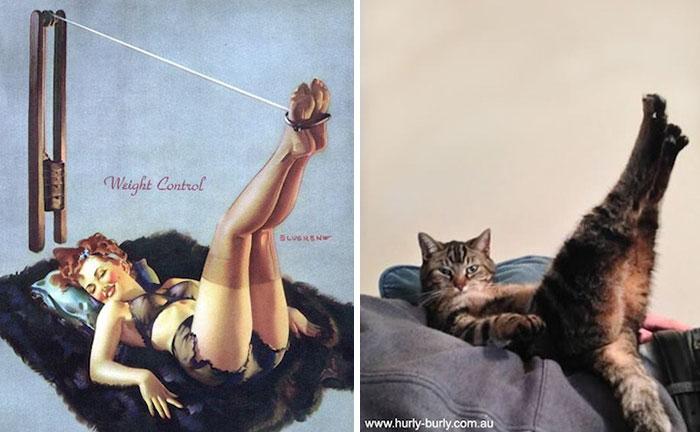 девушка пин-ап и кот с лапами кверху