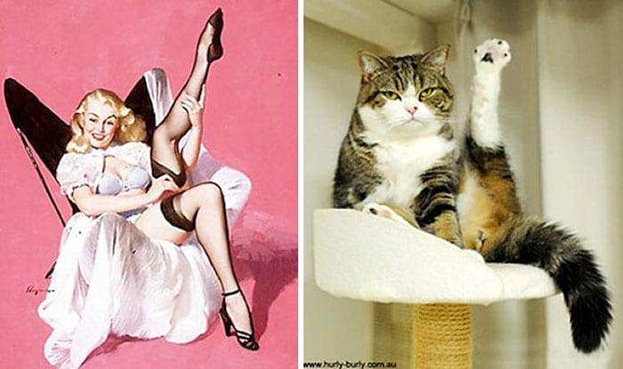 пин-ап девушка и кот с вытянутой лапой