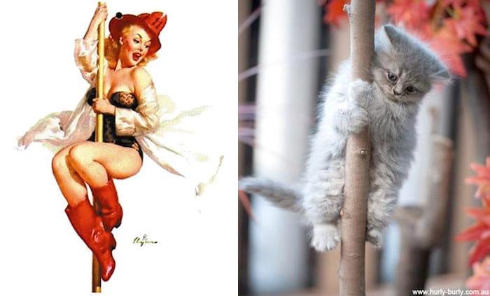 девушка пин-ап и серый котенок