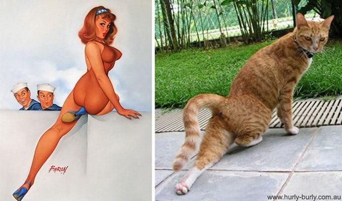 рыжий кот и девушка пин-ап