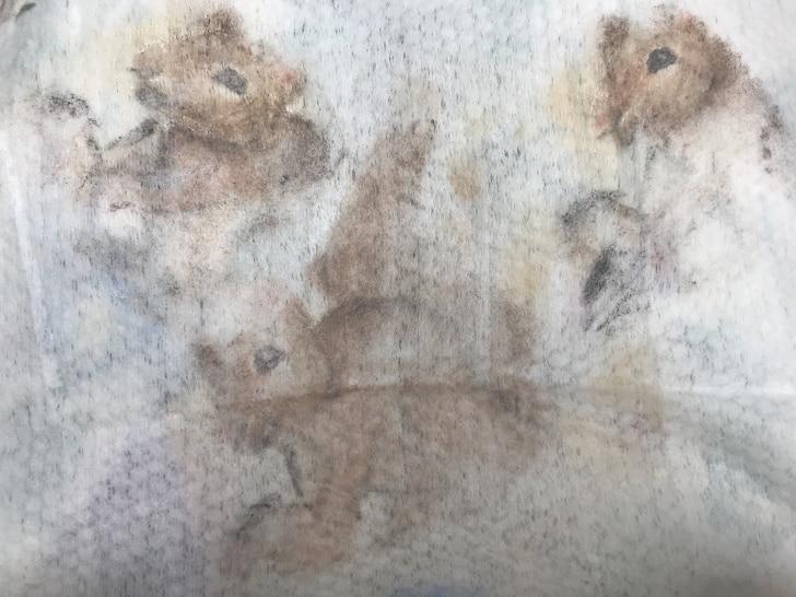 грязная салфетка