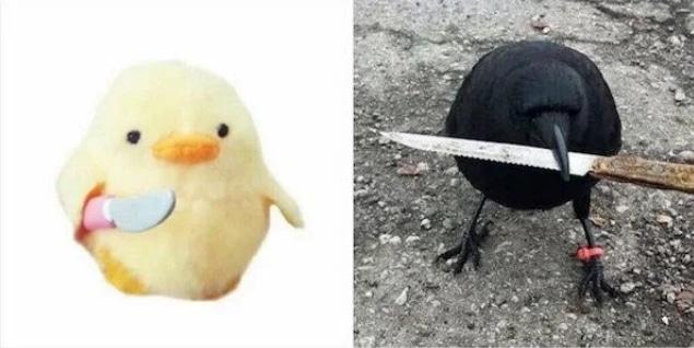 цыпленок и ворона с ножом