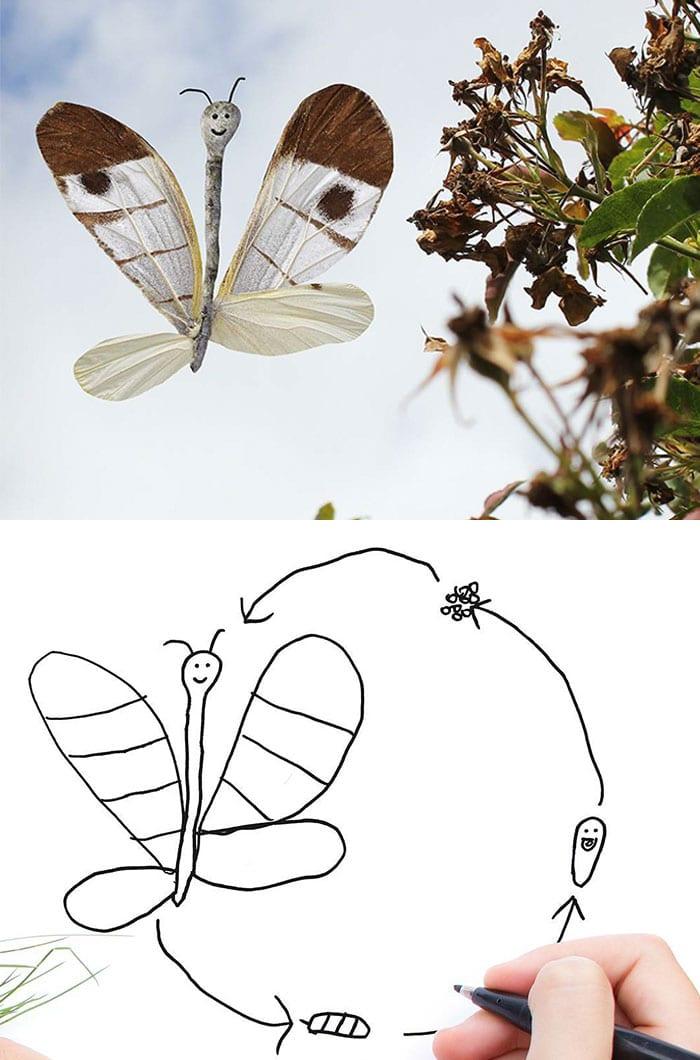 рисунок бабочки