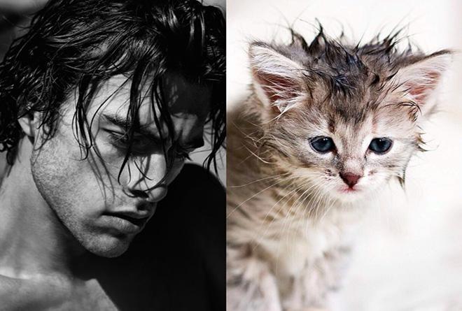 парень с мокрыми волосами и котенок